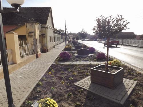Toamna în comuna Șiria -2014